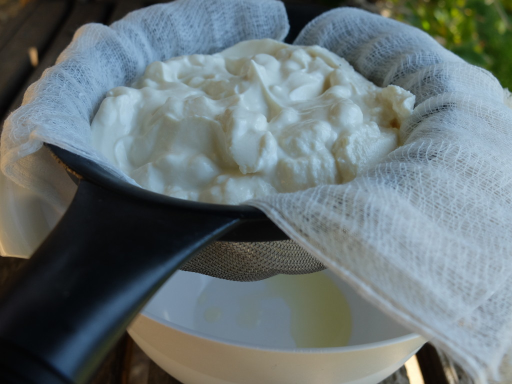 Strain Greek Honey Yogurt