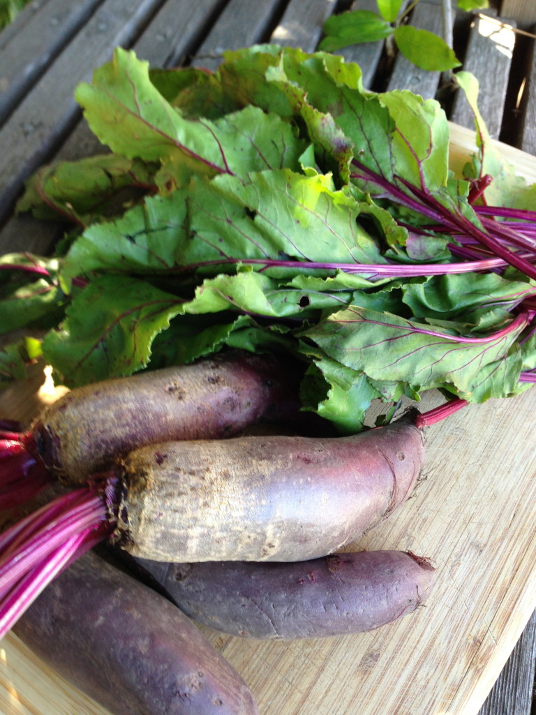 Washed Beets and Greens